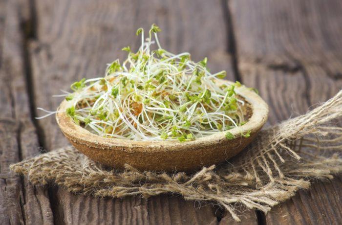 Sałatka warzywna z kiełkami pszenicy